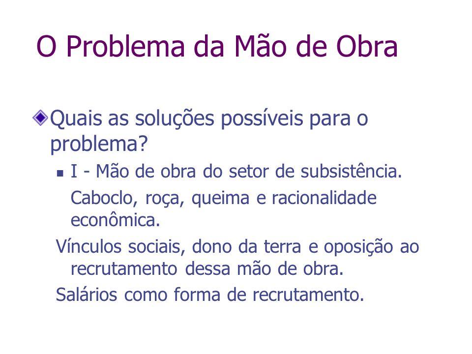 Quais as soluções possíveis para o problema? I - Mão de obra do setor de subsistência. Caboclo, roça, queima e racionalidade econômica. Vínculos socia