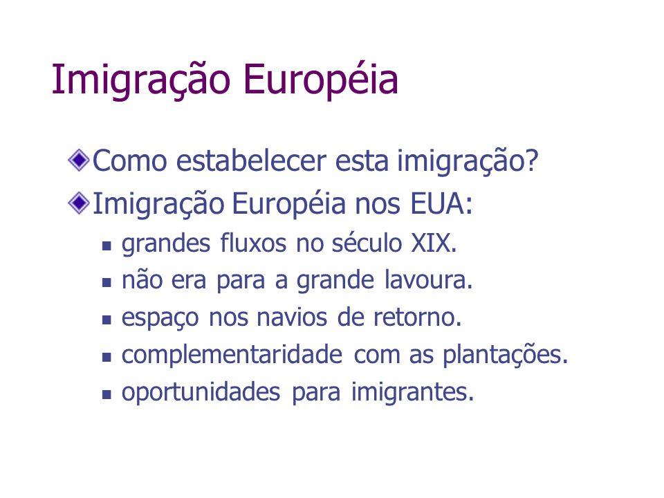 Imigração Européia Como estabelecer esta imigração? Imigração Européia nos EUA: grandes fluxos no século XIX. não era para a grande lavoura. espaço no