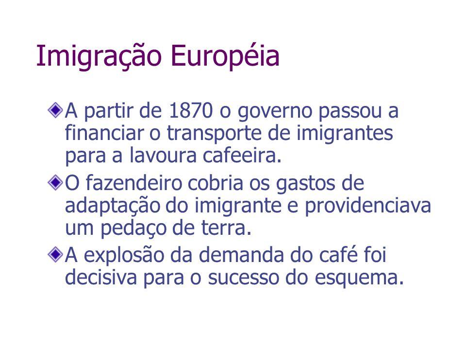 Imigração Européia A partir de 1870 o governo passou a financiar o transporte de imigrantes para a lavoura cafeeira. O fazendeiro cobria os gastos de