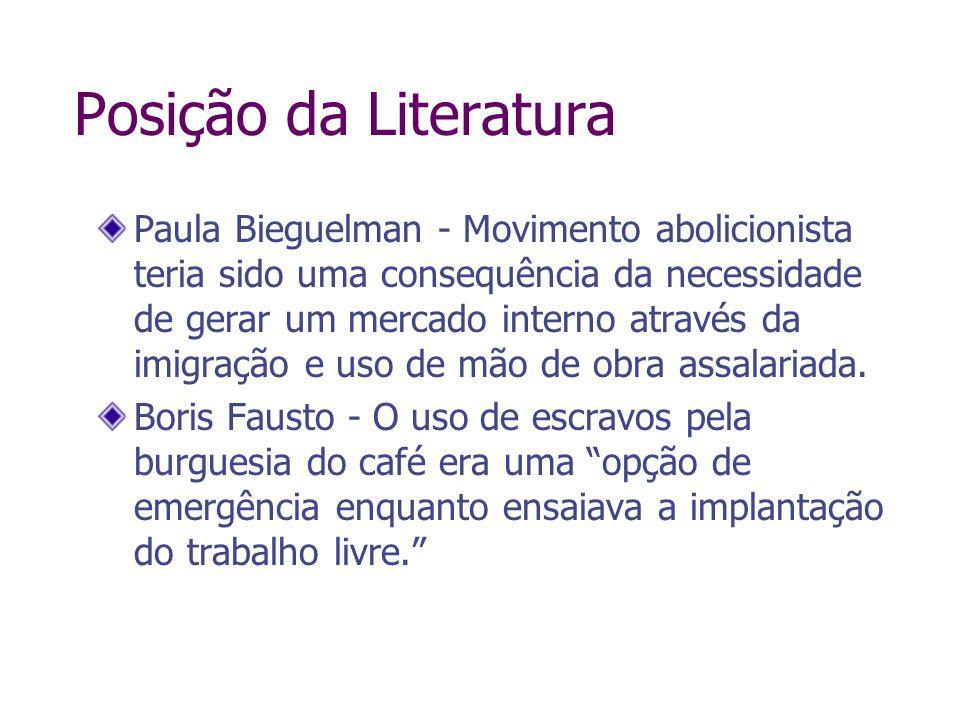 Posição da Literatura Paula Bieguelman - Movimento abolicionista teria sido uma consequência da necessidade de gerar um mercado interno através da imi