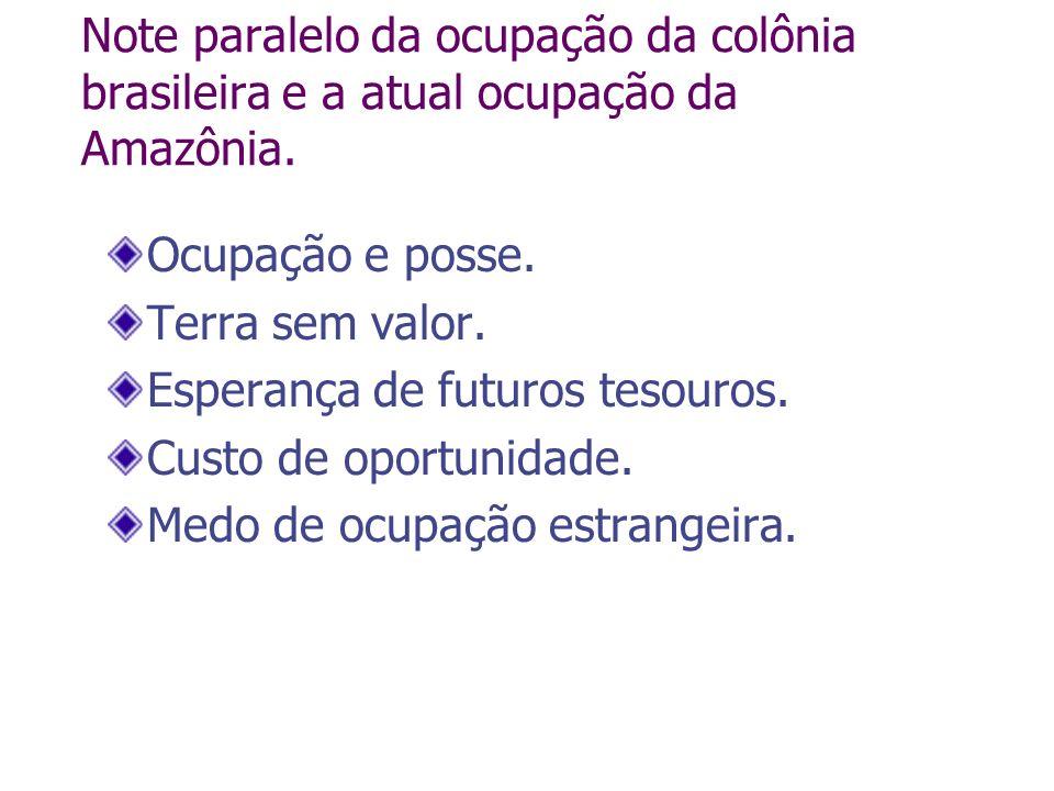 Note paralelo da ocupação da colônia brasileira e a atual ocupação da Amazônia. Ocupação e posse. Terra sem valor. Esperança de futuros tesouros. Cust