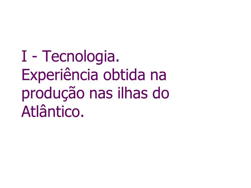 I - Tecnologia. Experiência obtida na produção nas ilhas do Atlântico.