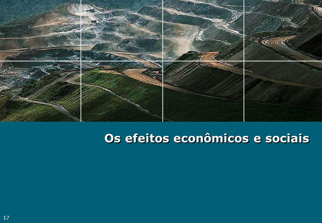 17 Os efeitos econômicos e sociais