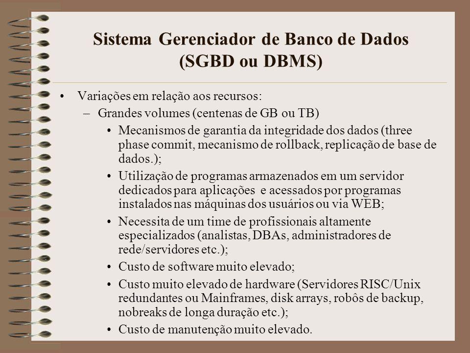 Sistema Gerenciador de Banco de Dados (SGBD ou DBMS) Variações em relação aos recursos: –Grandes volumes (centenas de GB ou TB) Mecanismos de garantia da integridade dos dados (three phase commit, mecanismo de rollback, replicação de base de dados.); Utilização de programas armazenados em um servidor dedicados para aplicações e acessados por programas instalados nas máquinas dos usuários ou via WEB; Necessita de um time de profissionais altamente especializados (analistas, DBAs, administradores de rede/servidores etc.); Custo de software muito elevado; Custo muito elevado de hardware (Servidores RISC/Unix redundantes ou Mainframes, disk arrays, robôs de backup, nobreaks de longa duração etc.); Custo de manutenção muito elevado.