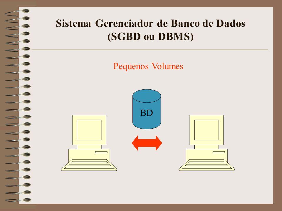 Sistema Gerenciador de Banco de Dados (SGBD ou DBMS) BD Pequenos Volumes