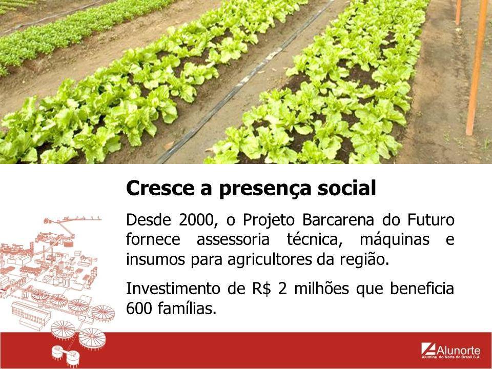 Cresce a presença social Desde 2000, o Projeto Barcarena do Futuro fornece assessoria técnica, máquinas e insumos para agricultores da região. Investi