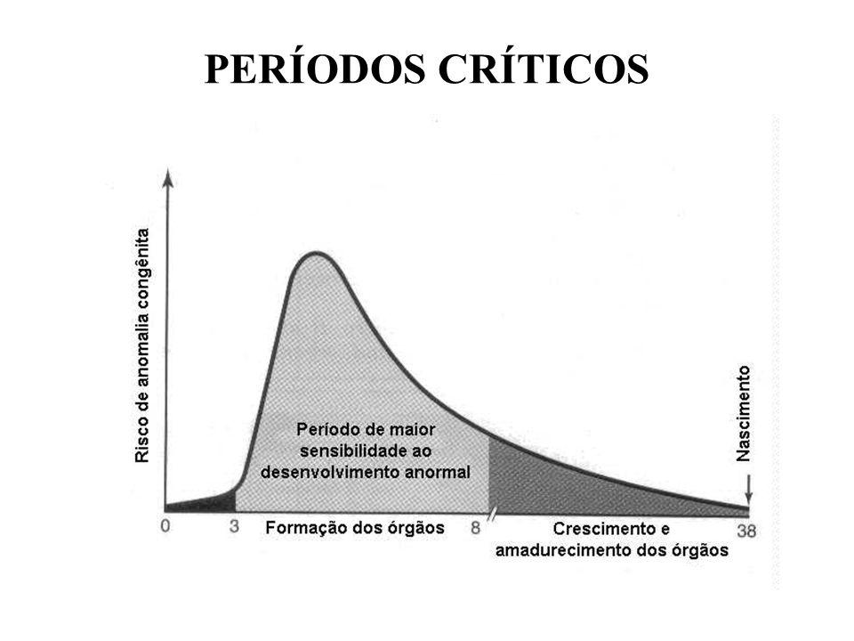 GATOS E GRÁVIDAS NÃO COMBINAM!!