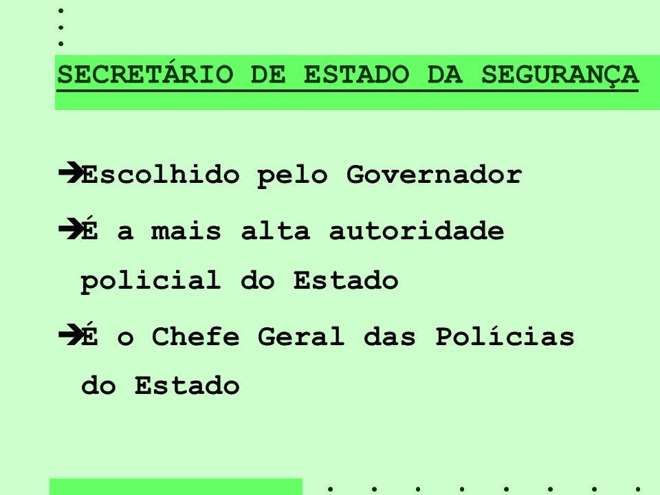 SECRETÁRIO DE ESTADO DA SEGURANÇA èEscolhido pelo Governador èÉ a mais alta autoridade policial do Estado èÉ o Chefe Geral das Polícias do Estado
