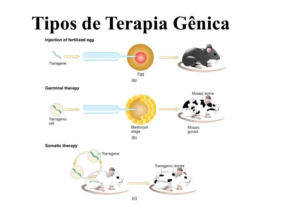 Tipos de Terapia Gênica