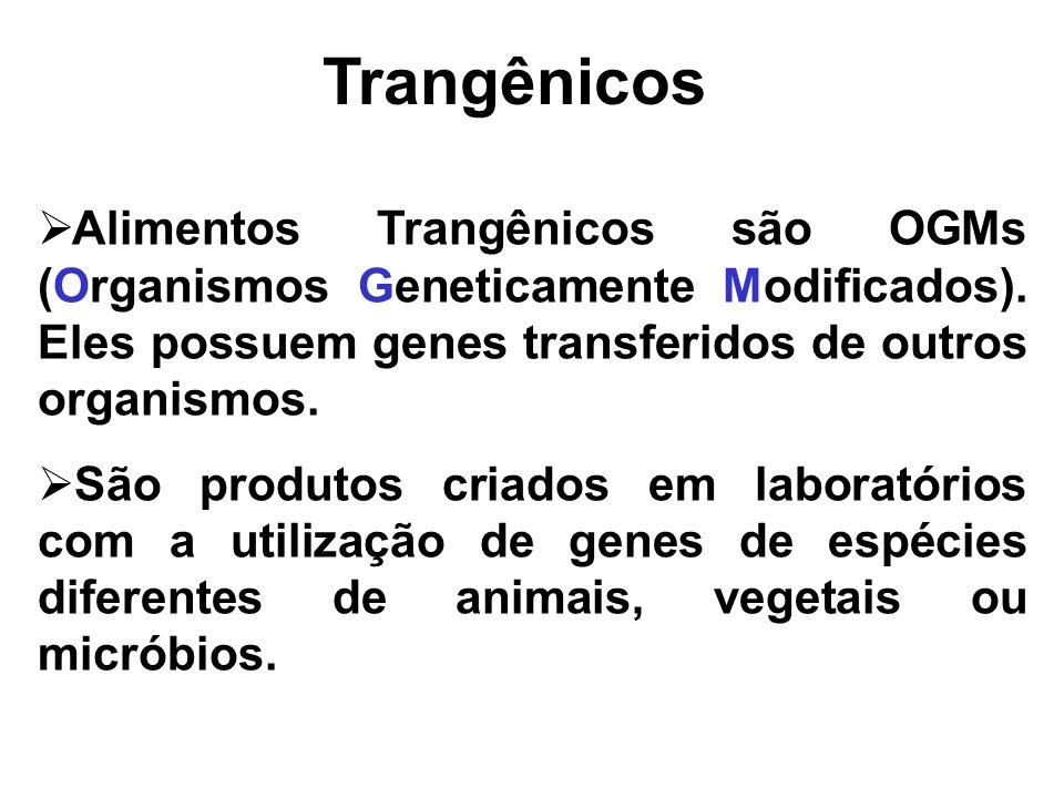 Alimentos Trangênicos são OGMs (Organismos Geneticamente Modificados). Eles possuem genes transferidos de outros organismos. São produtos criados em l
