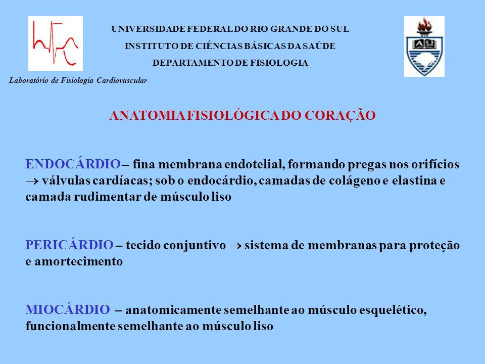 Laboratório de Fisiologia Cardiovascular UNIVERSIDADE FEDERAL DO RIO GRANDE DO SUL INSTITUTO DE CIÊNCIAS BÁSICAS DA SAÚDE DEPARTAMENTO DE FISIOLOGIA A