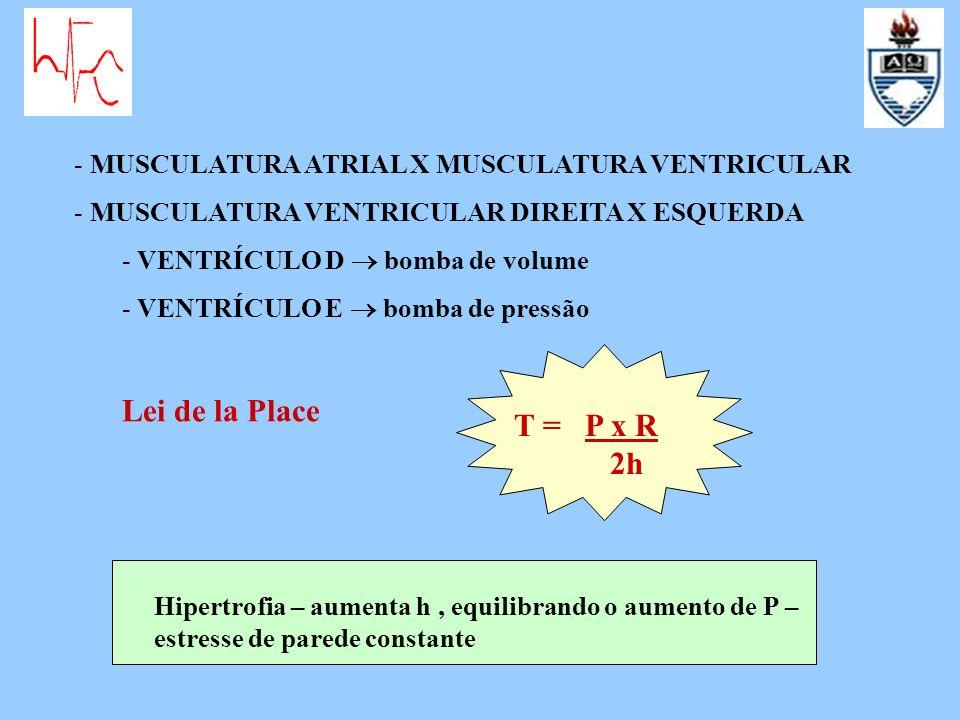 - MUSCULATURA ATRIAL X MUSCULATURA VENTRICULAR - MUSCULATURA VENTRICULAR DIREITA X ESQUERDA - VENTRÍCULO D bomba de volume - VENTRÍCULO E bomba de pre