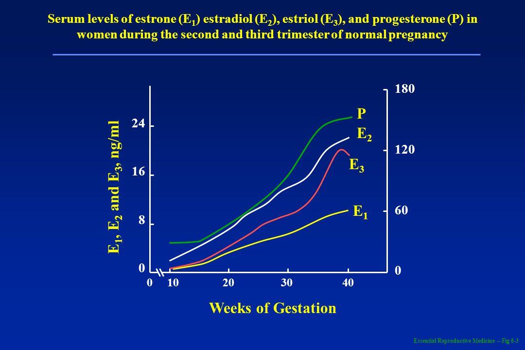 Serum levels of estrone (E 1 ) estradiol (E 2 ), estriol (E 3 ), and progesterone (P) in women during the second and third trimester of normal pregnan