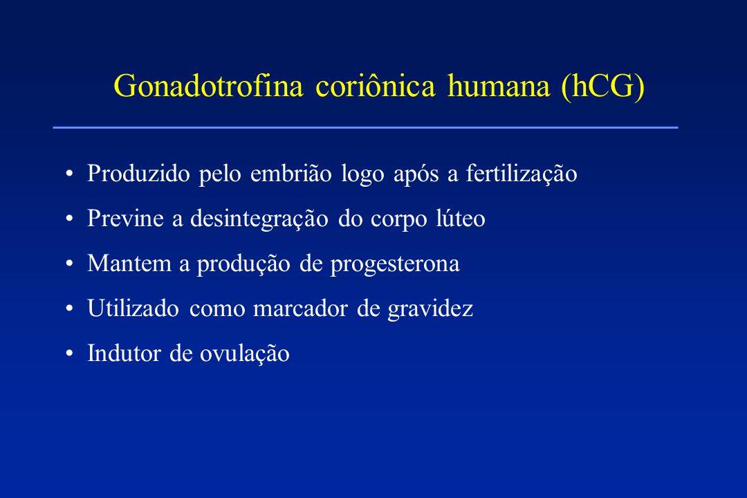Gonadotrofina coriônica humana (hCG) Produzido pelo embrião logo após a fertilização Previne a desintegração do corpo lúteo Mantem a produção de proge