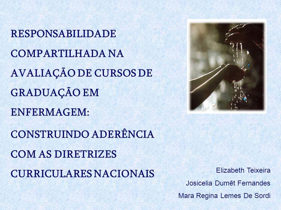 RESPONSABILIDADE COMPARTILHADA NA AVALIAÇÃO DE CURSOS DE GRADUAÇÃO EM ENFERMAGEM: CONSTRUINDO ADERÊNCIA COM AS DIRETRIZES CURRICULARES NACIONAIS Eliza