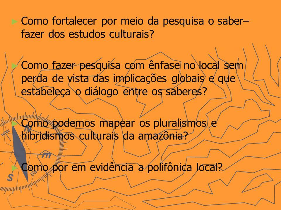 Como fortalecer por meio da pesquisa o saber– fazer dos estudos culturais? Como fazer pesquisa com ênfase no local sem perda de vista das implicações