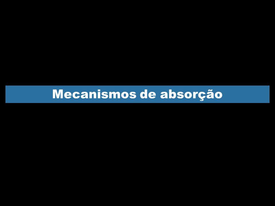 Mecanismos de absorção