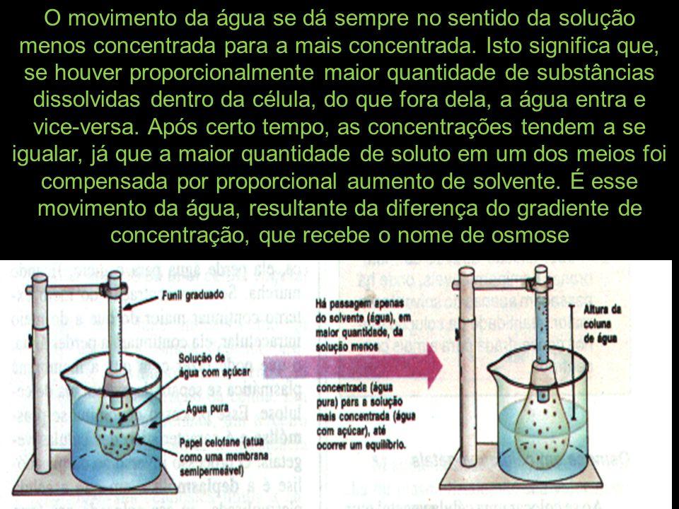 O movimento da água se dá sempre no sentido da solução menos concentrada para a mais concentrada. Isto significa que, se houver proporcionalmente maio