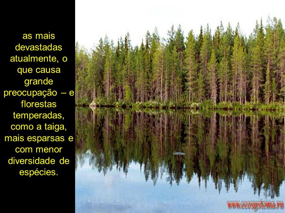 as mais devastadas atualmente, o que causa grande preocupação – e florestas temperadas, como a taiga, mais esparsas e com menor diversidade de espécie