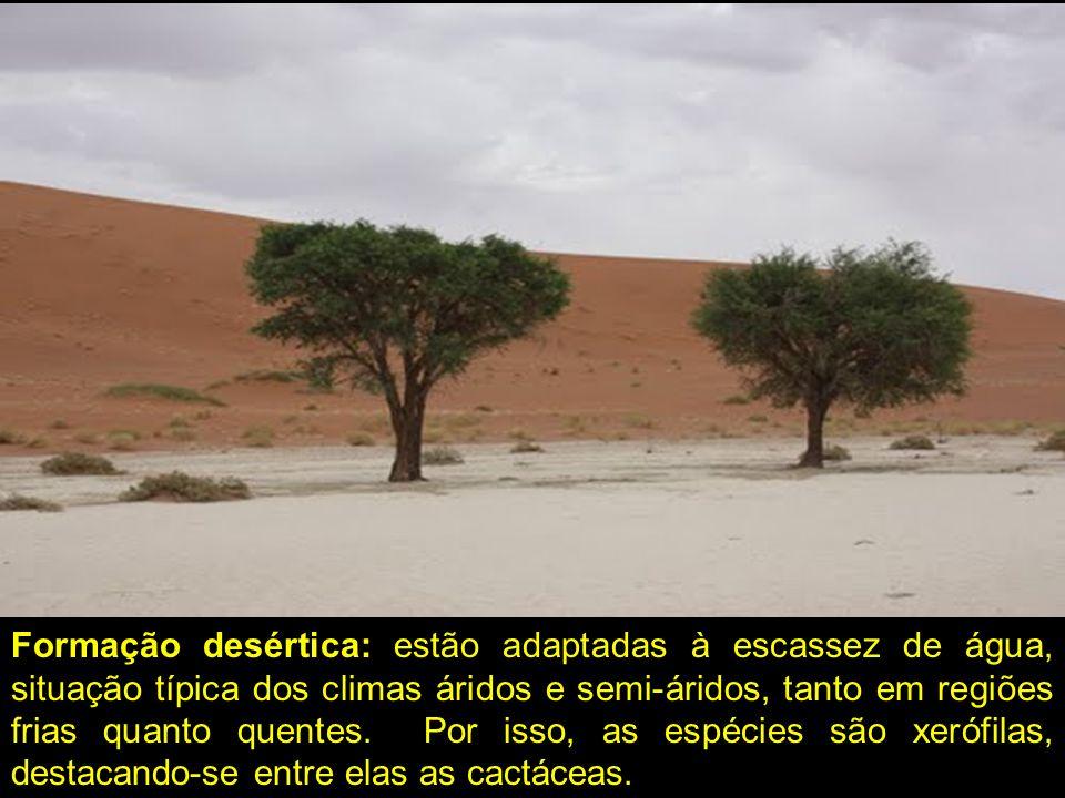 Formação desértica: estão adaptadas à escassez de água, situação típica dos climas áridos e semi-áridos, tanto em regiões frias quanto quentes. Por is