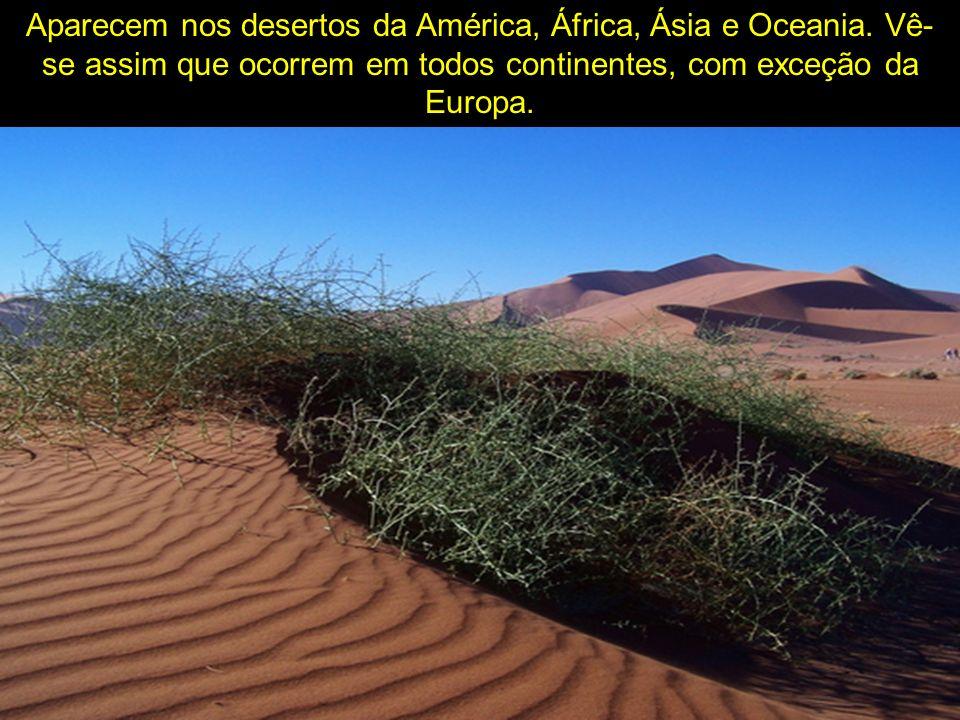 Aparecem nos desertos da América, África, Ásia e Oceania. Vê- se assim que ocorrem em todos continentes, com exceção da Europa.
