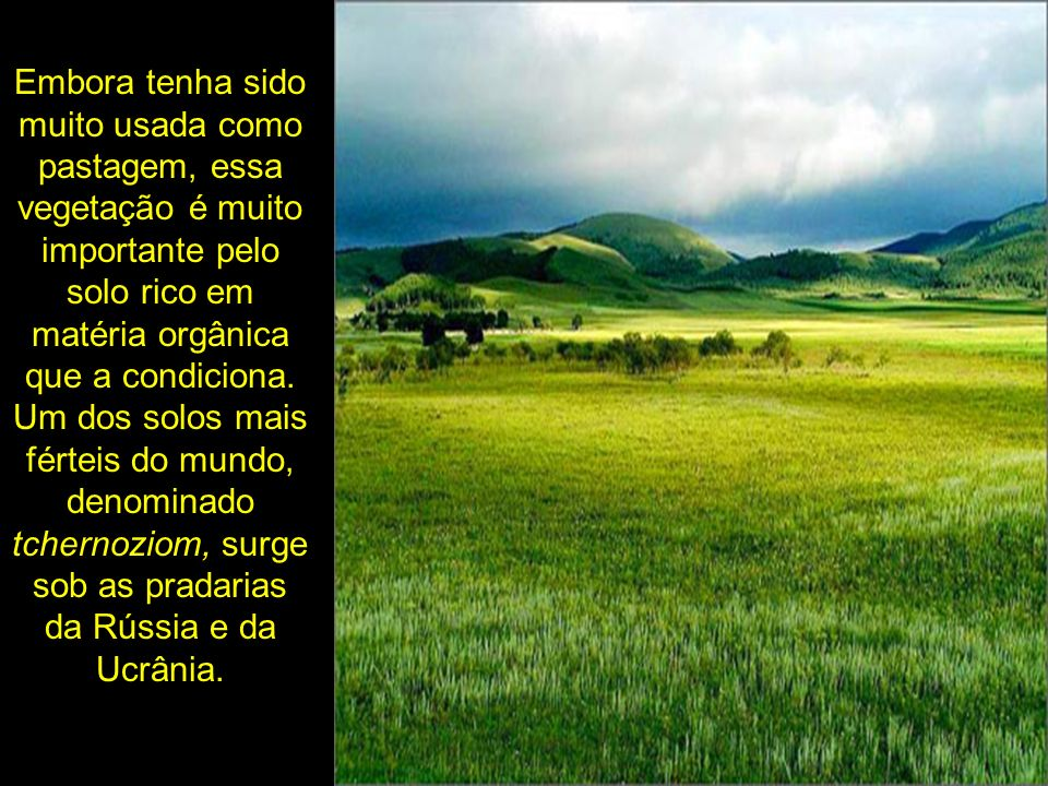 Embora tenha sido muito usada como pastagem, essa vegetação é muito importante pelo solo rico em matéria orgânica que a condiciona. Um dos solos mais