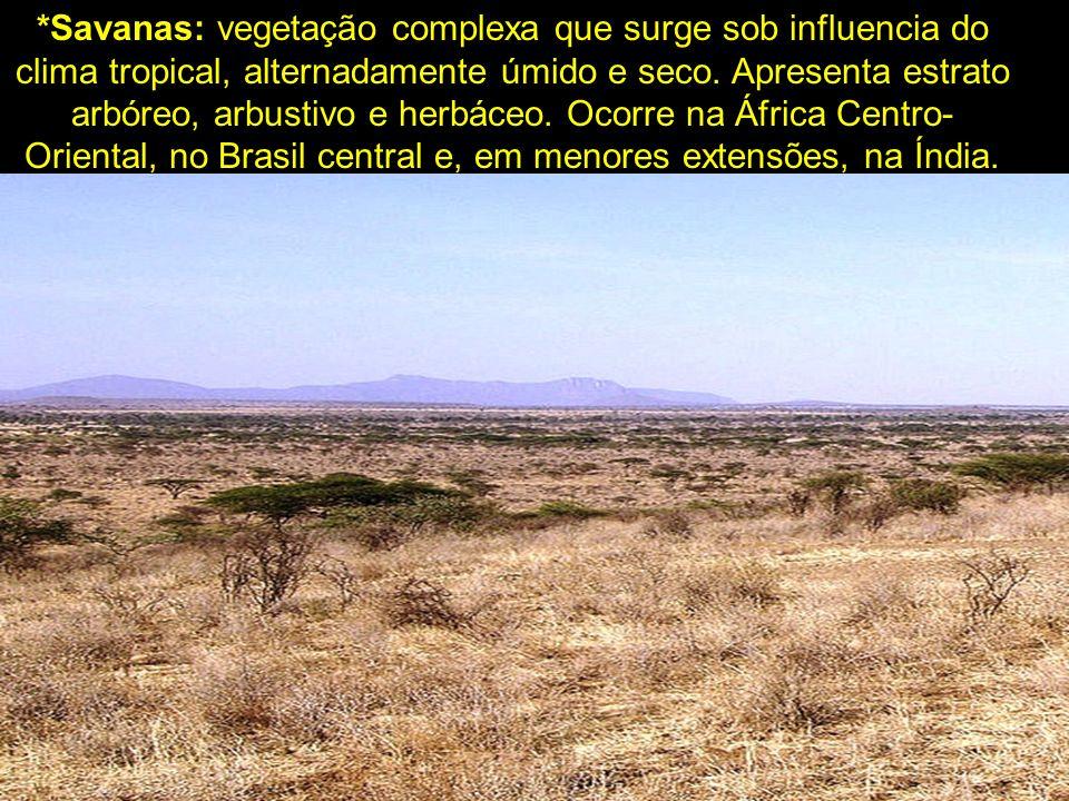 *Savanas: vegetação complexa que surge sob influencia do clima tropical, alternadamente úmido e seco. Apresenta estrato arbóreo, arbustivo e herbáceo.
