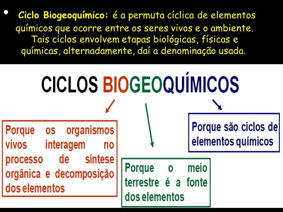 Ciclo Biogeoquímico: é a permuta cíclica de elementos químicos que ocorre entre os seres vivos e o ambiente. Tais ciclos envolvem etapas biológicas, f