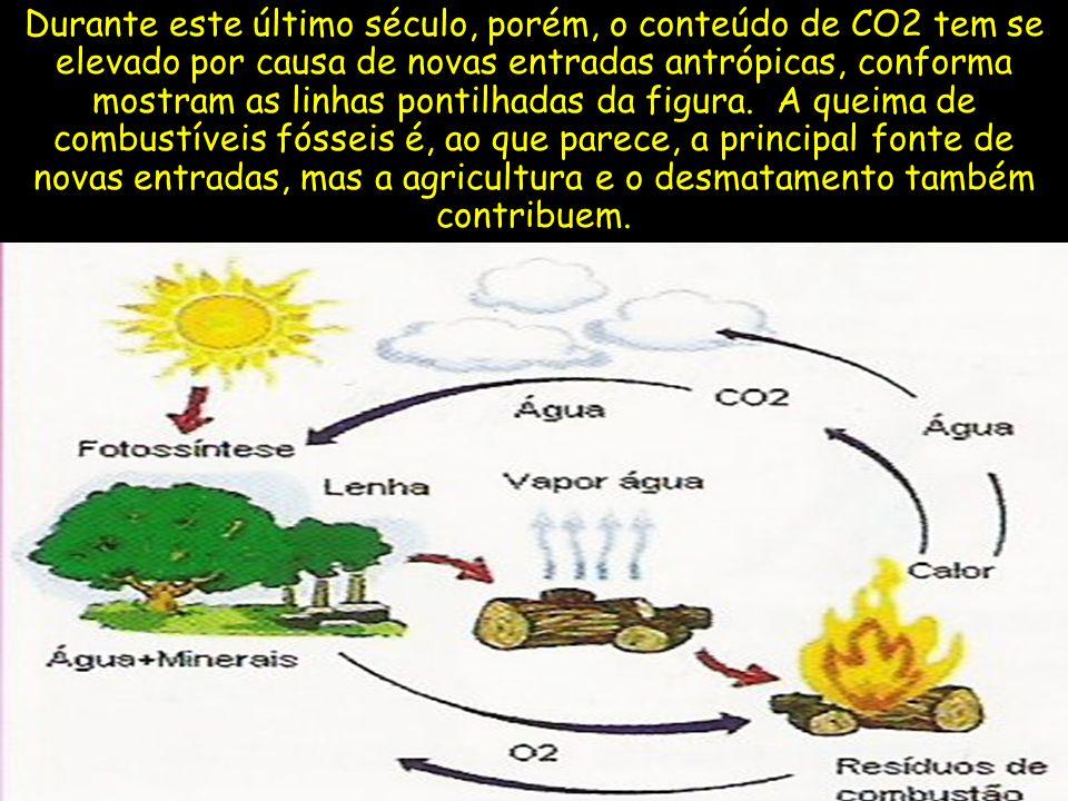 Durante este último século, porém, o conteúdo de CO2 tem se elevado por causa de novas entradas antrópicas, conforma mostram as linhas pontilhadas da