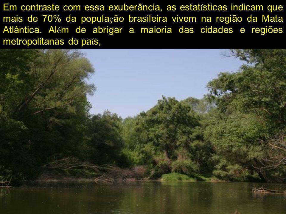 Em contraste com essa exuberância, as estat í sticas indicam que mais de 70% da popula ç ão brasileira vivem na região da Mata Atlântica. Al é m de ab