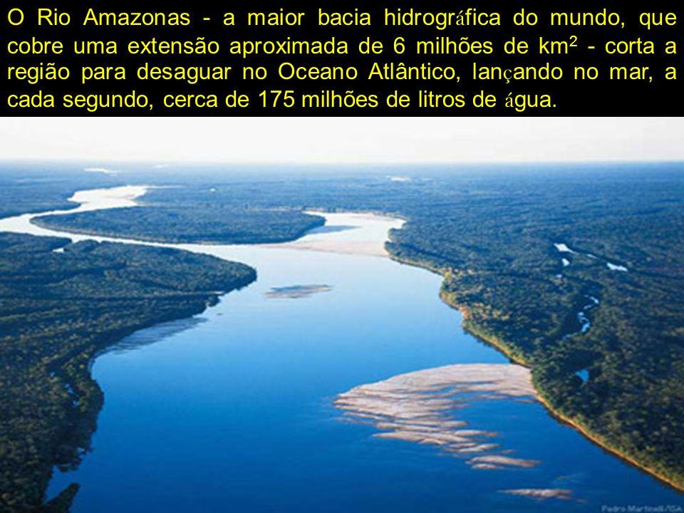 O Rio Amazonas - a maior bacia hidrogr á fica do mundo, que cobre uma extensão aproximada de 6 milhões de km 2 - corta a região para desaguar no Ocean