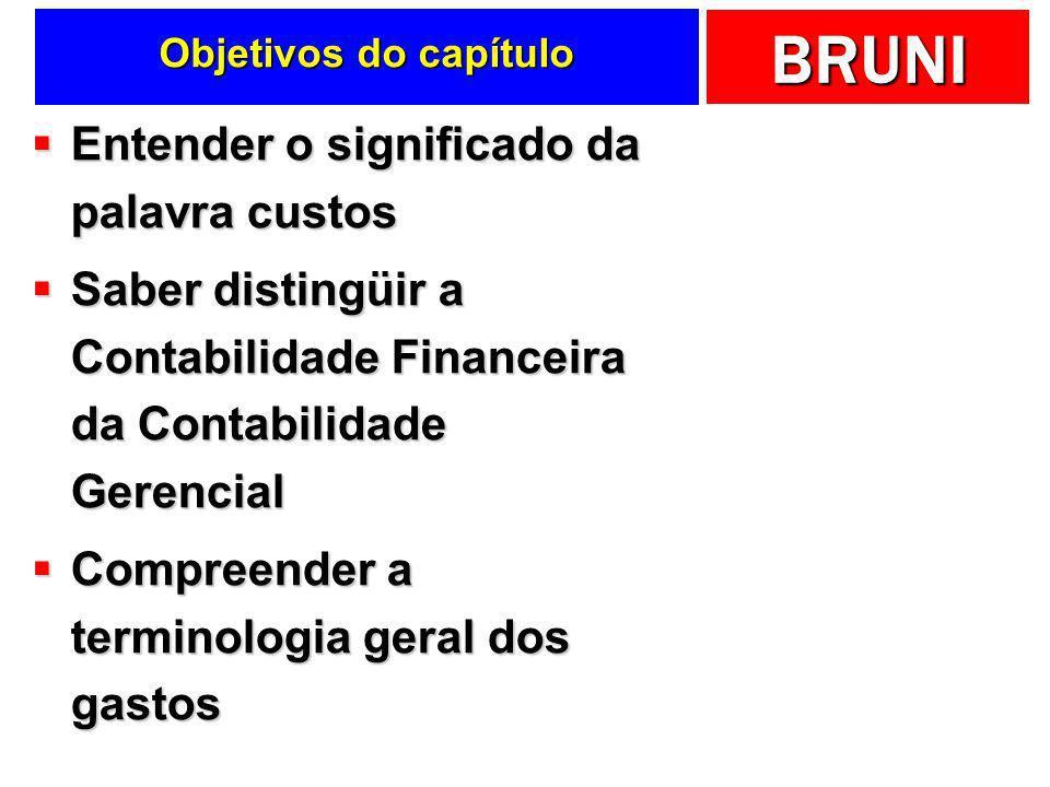 BRUNI Mão de Obra e Gastos Diz-se que, no Brasil, o trabalhador ganha muito pouco e custa muito caro Efeito dos encargos e benefícios sobre as folhas de pagamento