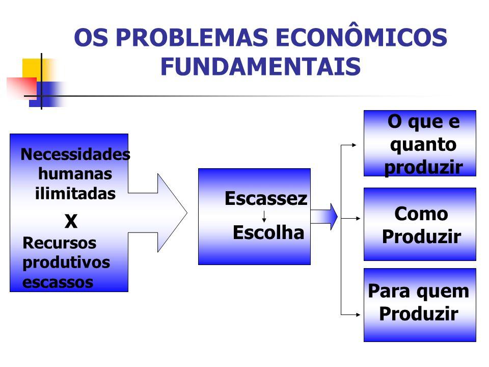 OS PROBLEMAS ECONÔMICOS FUNDAMENTAIS Expectativa de obter lucro.
