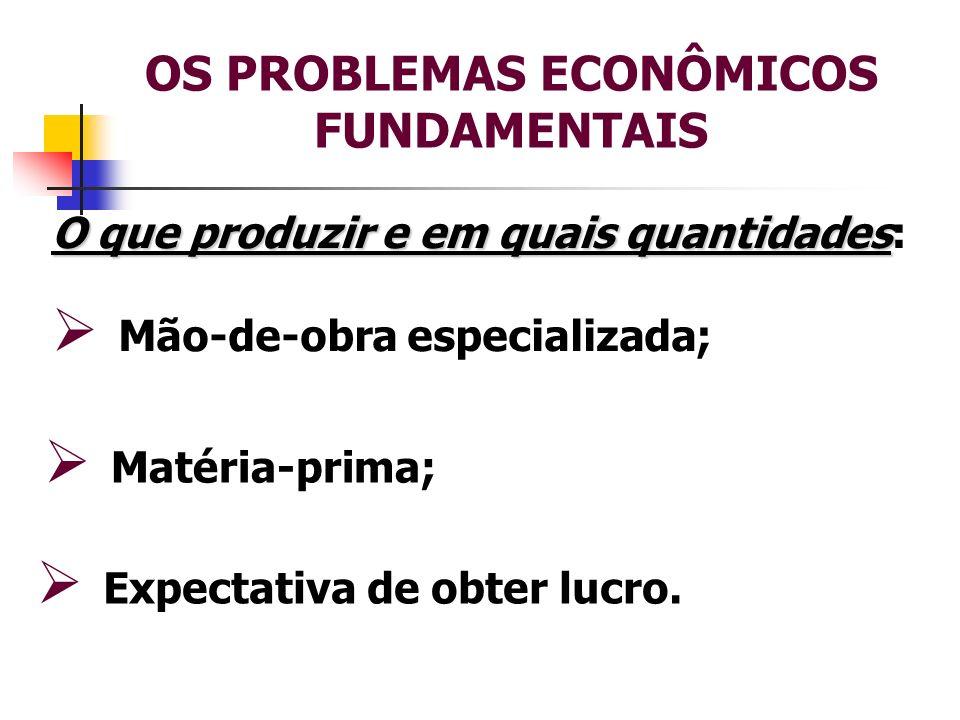OS PROBLEMAS ECONÔMICOS FUNDAMENTAIS Expectativa de obter lucro. O que produzir e em quais quantidades O que produzir e em quais quantidades: Mão-de-o