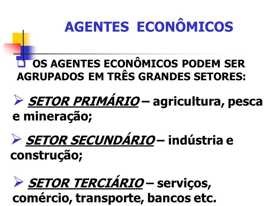 AGENTES ECONÔMICOS OS AGENTES ECONÔMICOS PODEM SER AGRUPADOS EM TRÊS GRANDES SETORES: SETOR PRIMÁRIO – agricultura, pesca e mineração; SETOR SECUNDÁRI