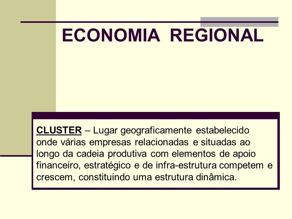 ECONOMIA REGIONAL CLUSTER CLUSTER – Lugar geograficamente estabelecido onde várias empresas relacionadas e situadas ao longo da cadeia produtiva com e