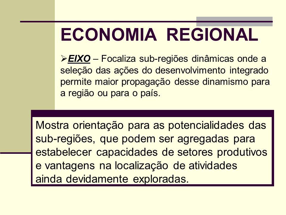 ECONOMIA REGIONAL Mostra orientação para as potencialidades das sub-regiões, que podem ser agregadas para estabelecer capacidades de setores produtivo