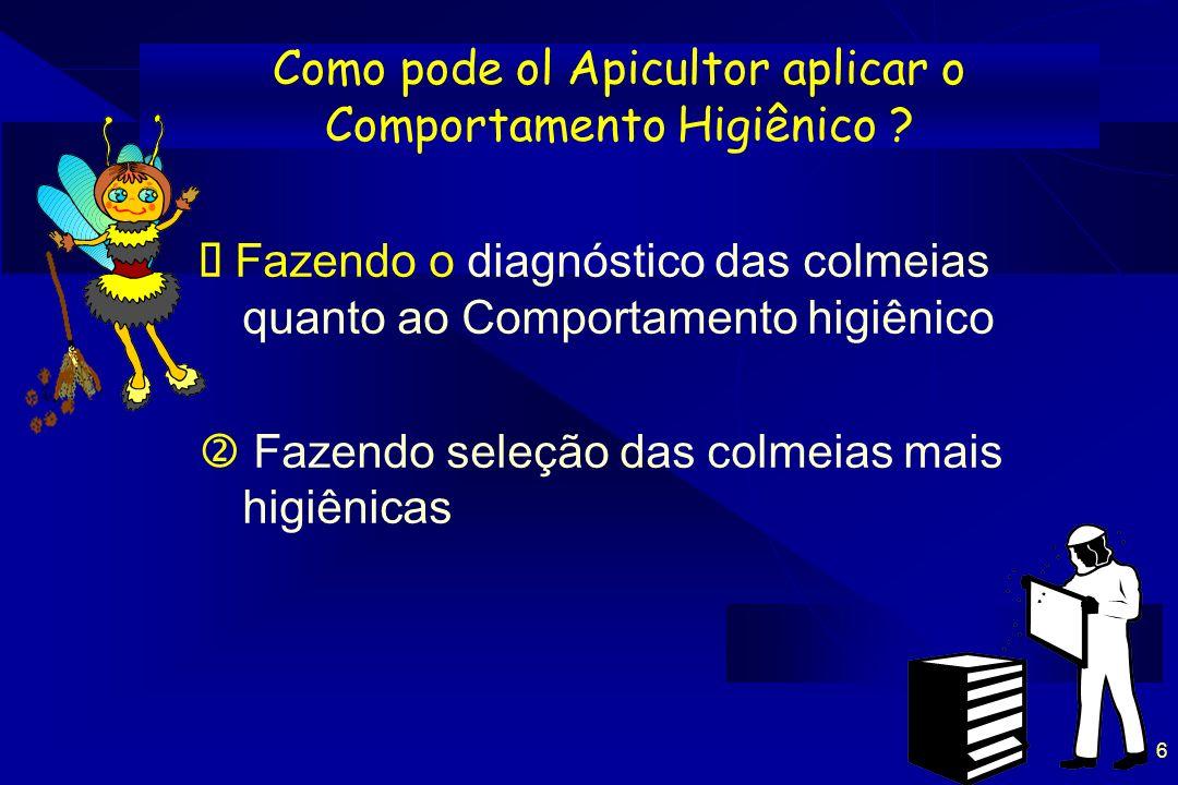 6 Como pode ol Apicultor aplicar o Comportamento Higiênico ? Fazendo o diagnóstico das colmeias quanto ao Comportamento higiênico Fazendo seleção das