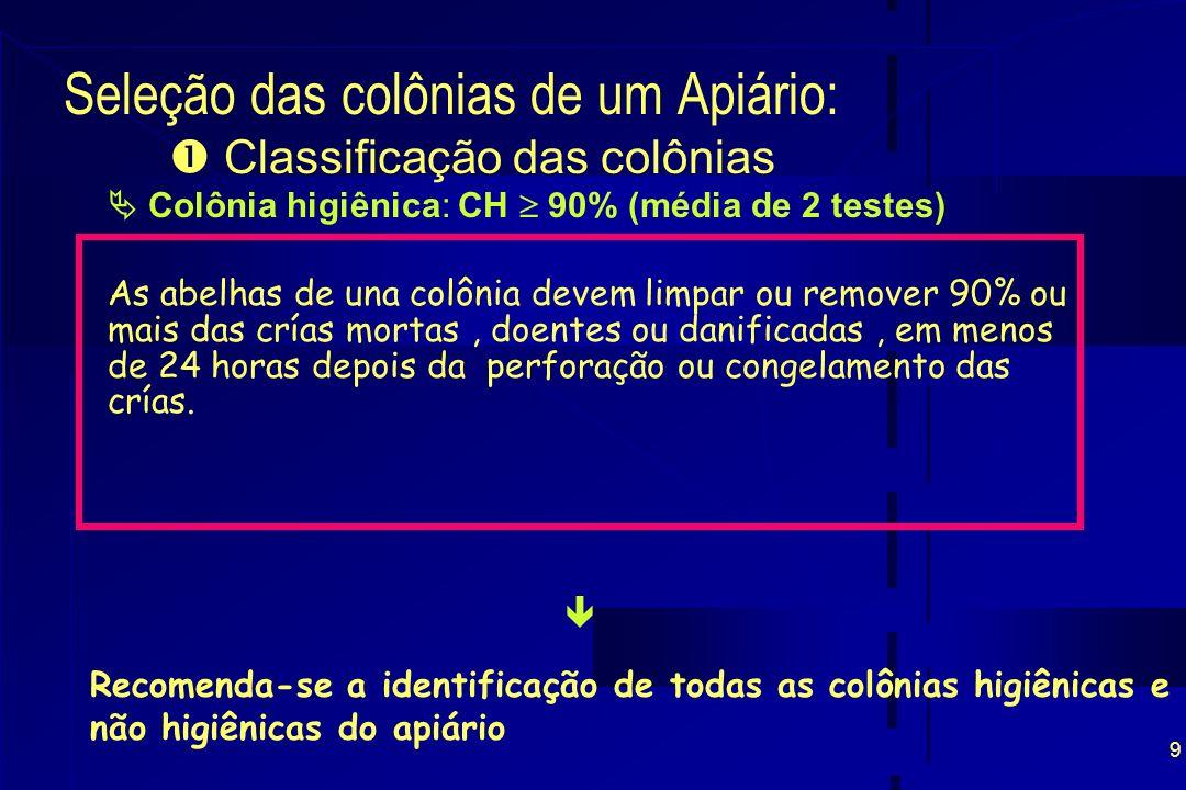9 Seleção das colônias de um Apiário: Colônia higiênica: CH 90% (média de 2 testes) As abelhas de una colônia devem limpar ou remover 90% ou mais das