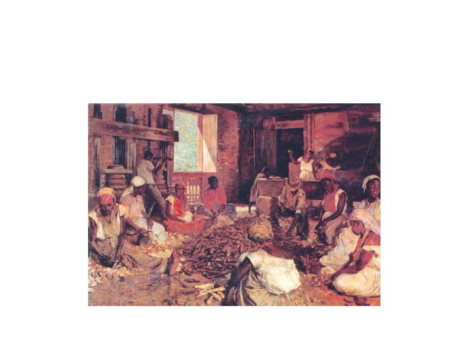 A incapacidade de adaptação do indígena para a maioria das tarefas colonizadoras e depois as leis de proibição do cativeiro do índio fizeram com que o tráfico negreiro para o Brasil aumentasse a partir de fins do século XVI e se mantivesse numa crescente progressão até meados do séc.