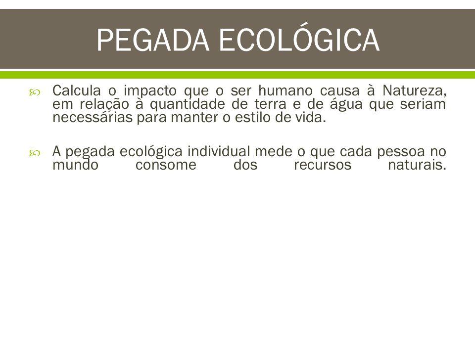 PEGADA ECOLÓGICA Calcula o impacto que o ser humano causa à Natureza, em relação à quantidade de terra e de água que seriam necessárias para manter o
