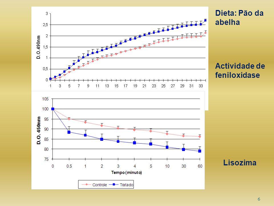 6 Actividade de feniloxidase Lisozima Dieta: Pão da abelha