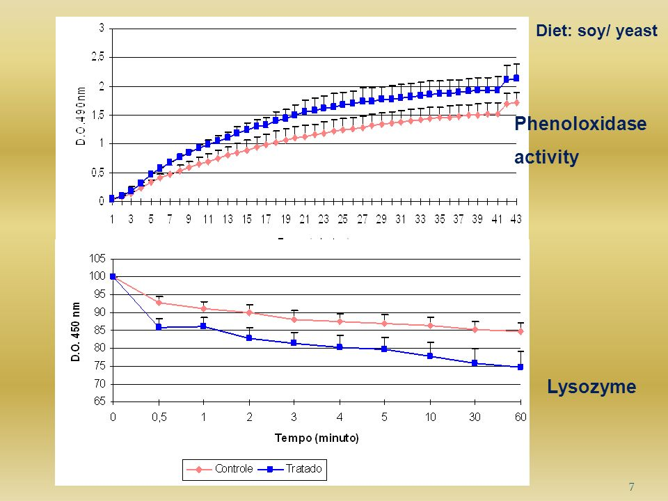 8 Diet: Syrup Phenoloxidase activity