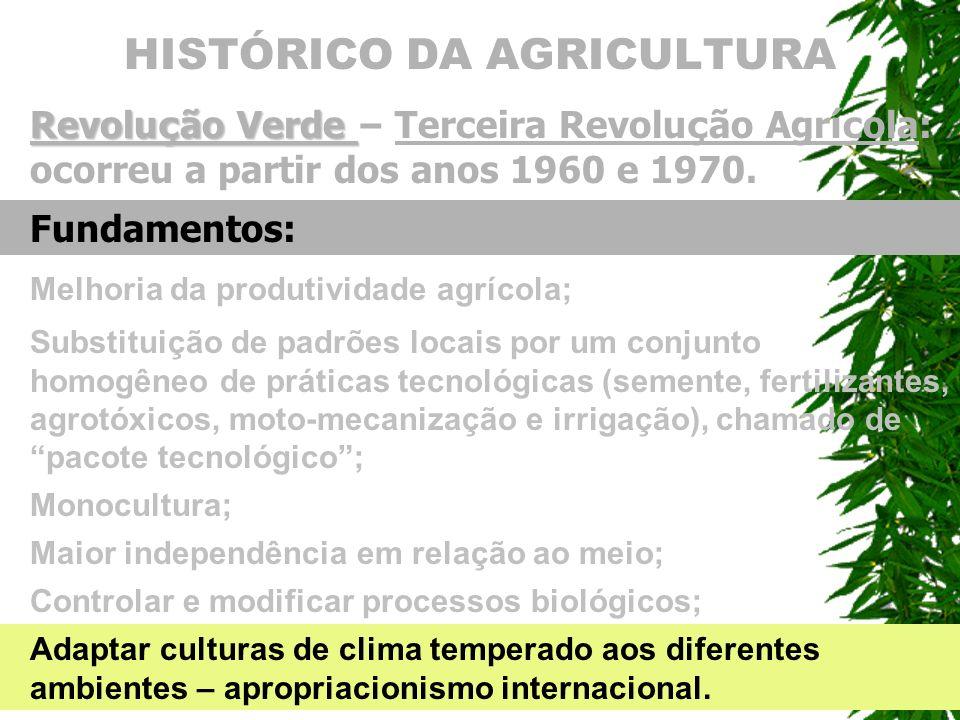 HISTÓRICO DA AGRICULTURA Revolu ç ão Verde Revolu ç ão Verde – Terceira Revolu ç ão Agr í cola: ocorreu a partir dos anos 1960 e 1970. Monocultura; Fu