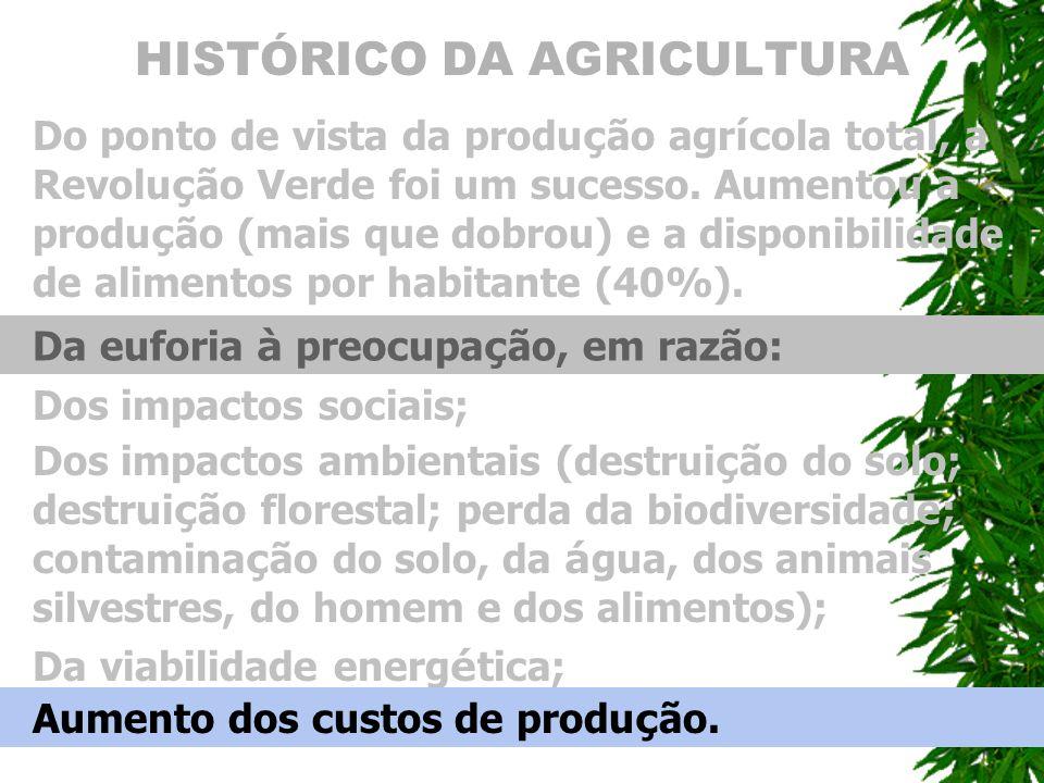 HISTÓRICO DA AGRICULTURA Do ponto de vista da produ ç ão agr í cola total, a Revolu ç ão Verde foi um sucesso. Aumentou a produ ç ão (mais que dobrou)