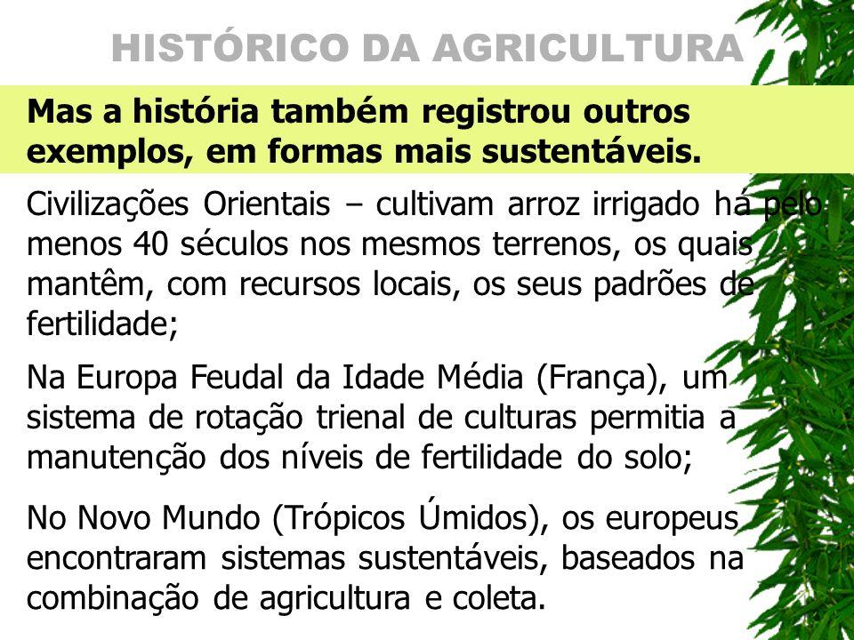 HISTÓRICO DA AGRICULTURA Mas a hist ó ria tamb é m registrou outros exemplos, em formas mais sustent á veis. Civiliza ç ões Orientais – cultivam arroz