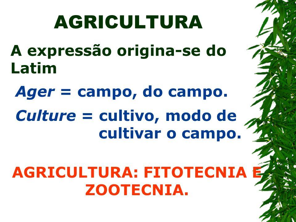 AGRICULTURA A expressão origina-se do Latim Ager = campo, do campo. Culture = cultivo, modo de cultivar o campo. AGRICULTURA: FITOTECNIA E ZOOTECNIA.