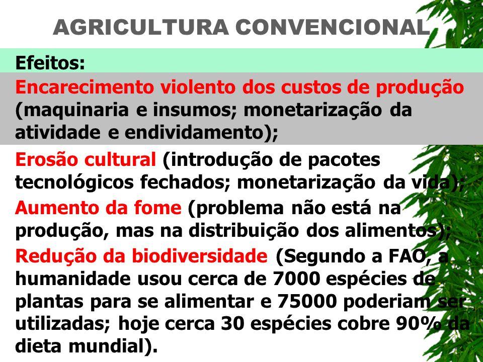 AGRICULTURA CONVENCIONAL Efeitos: Encarecimento violento dos custos de produ ç ão (maquinaria e insumos; monetariza ç ão da atividade e endividamento)
