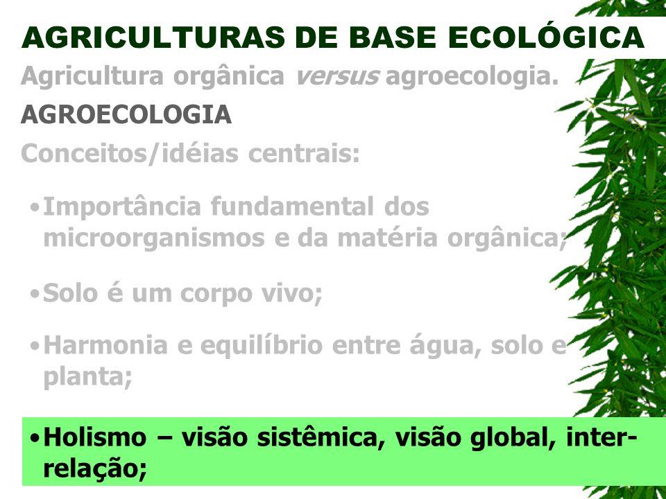 AGRICULTURAS DE BASE ECOLÓGICA AGROECOLOGIA Agricultura orgânica versus agroecologia. Conceitos/id é ias centrais: Importância fundamental dos microor