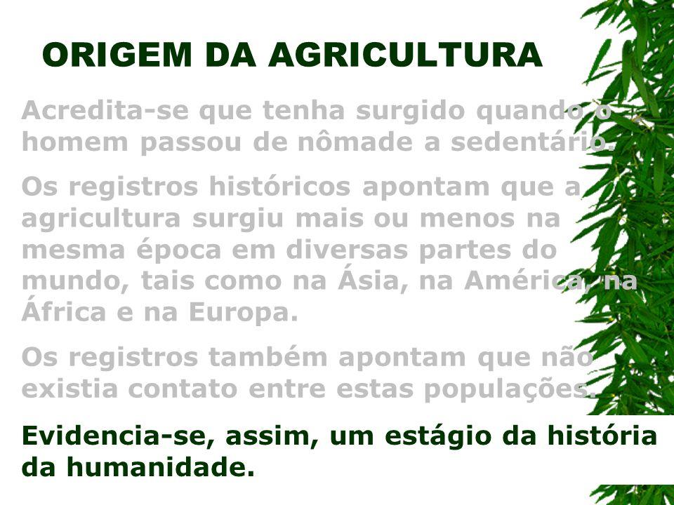 ORIGEM DA AGRICULTURA Acredita-se que tenha surgido quando o homem passou de nômade a sedentário. Os registros históricos apontam que a agricultura su